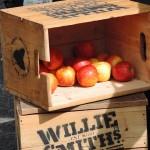 Organic food local farmer market
