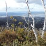 Mont Wellington Hobart Tasmania
