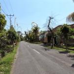 Canggu's street, Bali