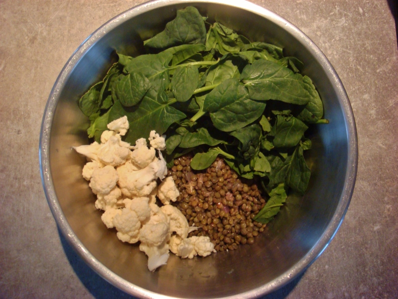 ingredients for lentils salad a anti SPM recipe  for girls who train BJJ