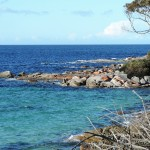 BJJ_Tasmania_Launceston_St_Helens_Art_of_BJJ (2)